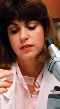 Health Care Offerings - Medical Lab Technician