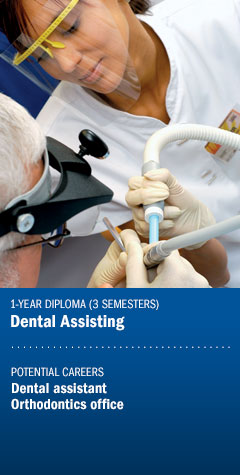 Program - Dental Assisting
