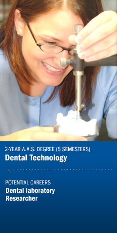 Program - Dental Technology
