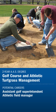 Program - Golf Course & Athletic Turfgrass Management