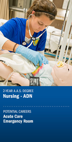 Program - Nursing ADN