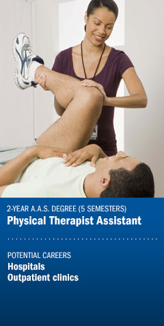 Program - Physical Therapist Assistant