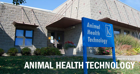 Animal Health Technology