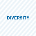 we value diversity image